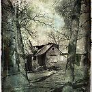A Broken Down House by AlexKujawa