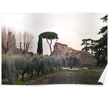 Roman Forum in winter Poster
