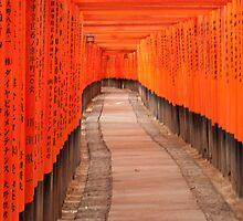 Tori at Fushimi Inari - Kyoto, Japan 2 by fab2can