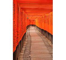 Tori at Fushimi Inari - Kyoto, Japan 2 Photographic Print