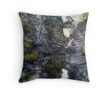 Below Athabasca Falls Throw Pillow