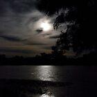 Moonlight on the Georgina by Carmel Williams
