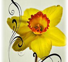 Spring Melody by Saija  Lehtonen