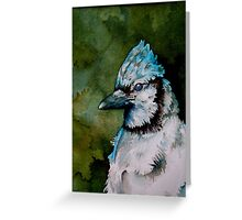 Summer Blues, showy & noisy backyard Blue Jay  Greeting Card