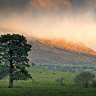 Dawn at Rawnsley Bluff by Robert Dettman