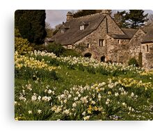 Spring at Cotehele Canvas Print