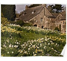 Spring at Cotehele Poster