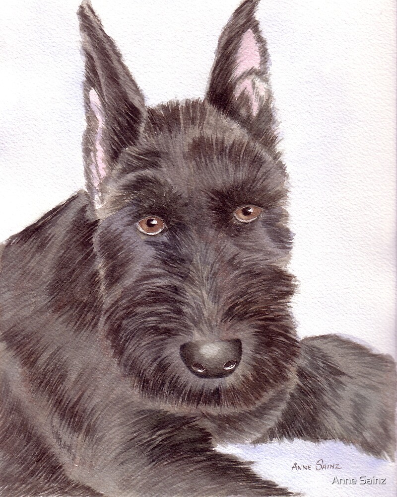 Max, a Schnauzer Puppy by Anne Sainz