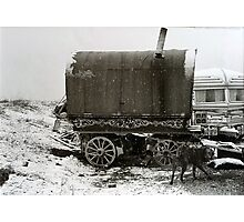 Vardo and Lurcher on a Gypsy Site in Yorkshire Photographic Print