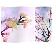Blossom #3   Diptych Poster