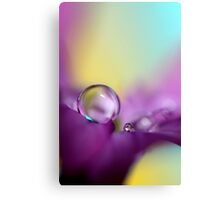 Drops of Spring Colour Canvas Print