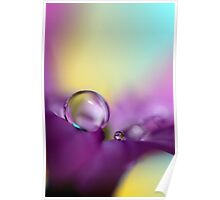 Drops of Spring Colour Poster