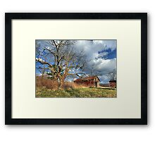 Afternoon on the Farm Framed Print