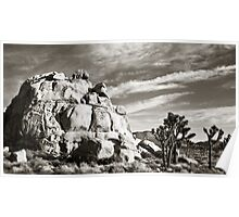 Joshua Tree National Park at Sunset Poster