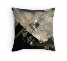 fly on a leaf Throw Pillow