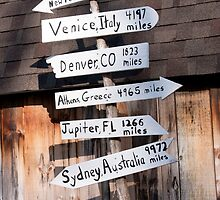 Where Should I Go? by Henry L. Sampson