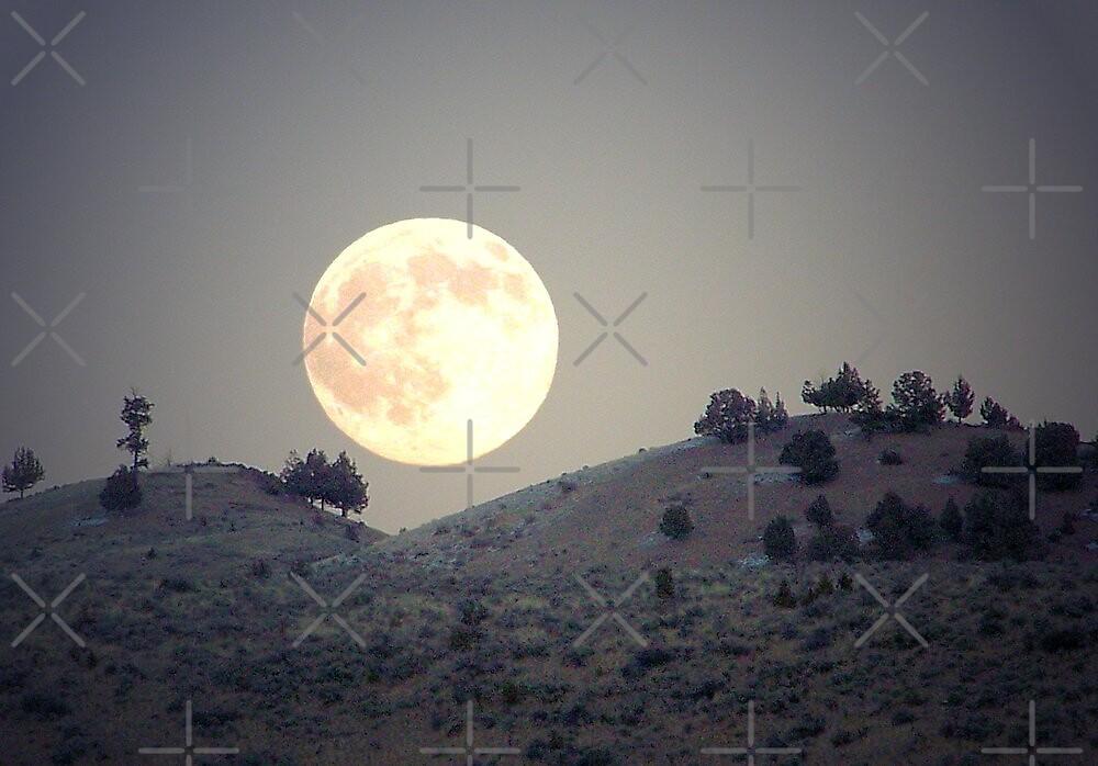 Sagebrush Moon by Betty  Town Duncan
