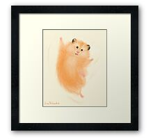 Joyful hamster Framed Print