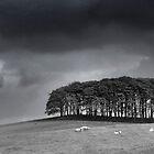 TreeScape by synergymono