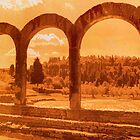 Roman Arches at Fiesole by Nigel Fletcher-Jones