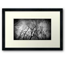 One creepy tree line Framed Print