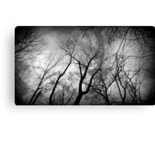 One creepy tree line Canvas Print