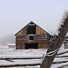 Old Barn - Fountain Valley, BC Canada by KansasA