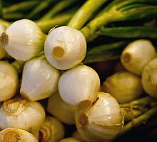 Onions by Bob Vaughan