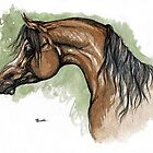 The bay arabian horse portrait by tarantella
