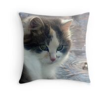 Water Play! Throw Pillow