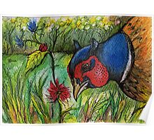 the pheasant in the garden Poster