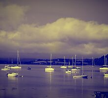 Bantry Bay by Rebecca Lipscomb