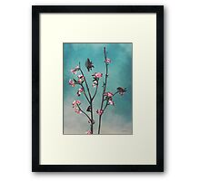 Hummingbears Framed Print