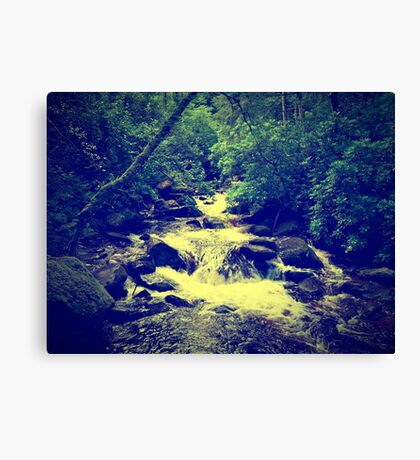Irish Spring Canvas Print