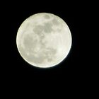 Moonlight Magic by djackson