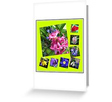 Crazy Spring Flowers Collage Greeting Card