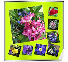 Crazy Spring Flowers Collage Poster