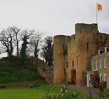 Tonbridge Castle - Across The Bailey by Dave Godden