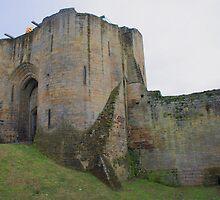 Tonbridge Castle, The Gatehouse From The Moat by Dave Godden