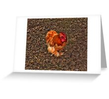 Churchill's Chicken... Greeting Card