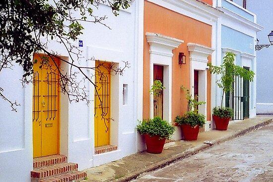 Old San Juan Street, Puerto Rico by Alberto  DeJesus