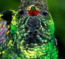 Emerald Hummer by Robbie Labanowski