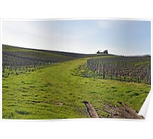 On the Trail to Napa Valley Poster