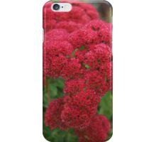 Autumn Joy Up Close iPhone Case/Skin