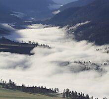 Fog on the Fraser River by KansasA