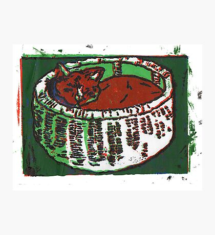 Snug As a Cat in a Basket (Screen Print Art) Photographic Print