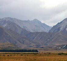 Rhobord Downs Conservation New Zealand by 104paul