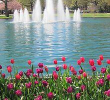 Spring Scene by Robert Stephens