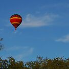 Red Balloon over the oak trees by Ben Waggoner