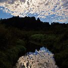 """Heavens Reflection""- by Trout MaGee by TroutMaGee"